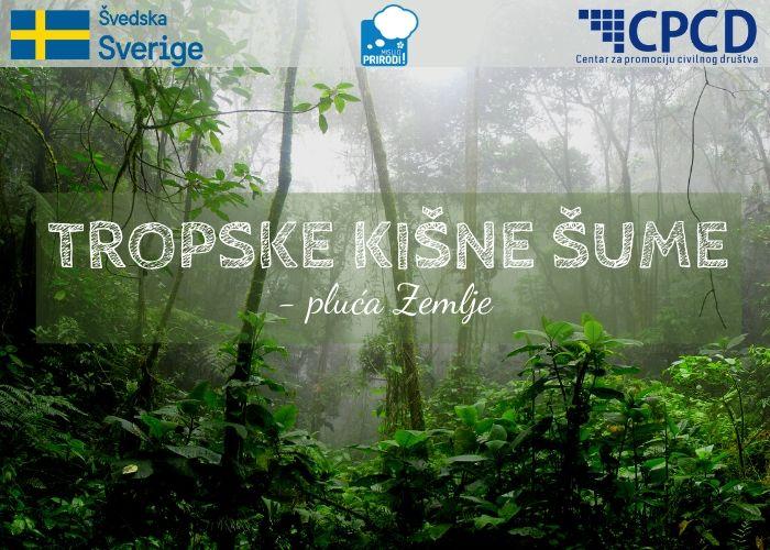 Tropske kišne šume (002)